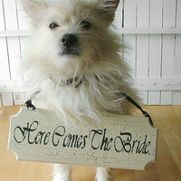 Here Comes The Bride - For Small Dog - Antique Style Reclaimed Wood Sign