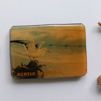 Vintage Myrtle Beach Souvenir with Seashell and Seahorse Fridge Magnets 1980s