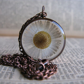 Pretty Daisy Pendant - Real tiny daisy encased in resin with open back copper bezel, Pressed Flower Jewelry