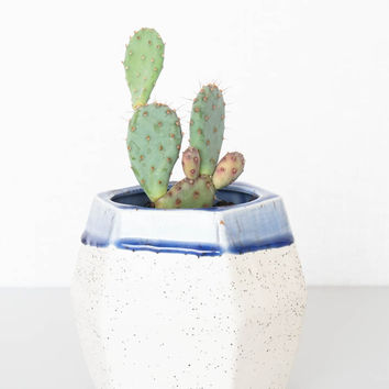 Ben Fiess Faceted Planter - Blue