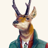 """Pronghorn"" - Art Print by Animal Crew"