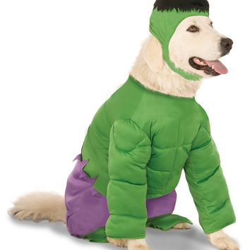 Rubies Costume Company Marvel Universe The Incredible Hulk Big Dog Boutique