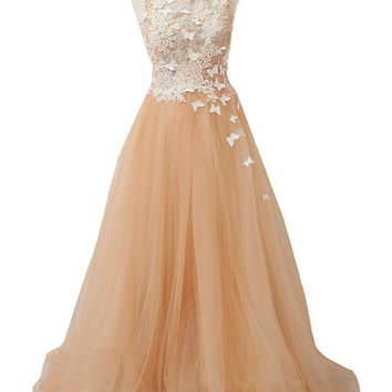 Soft Pink A-Line Tank Tulle Long Lace Formal Gown