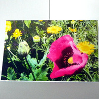 Bright Pink Floral Card/s
