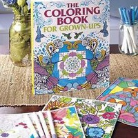 The Coloring Book For Grown-Ups Adults Artist Intricate Art Designs & Patterns