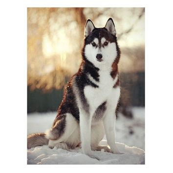 The diamond painting by numbers of wall art Husky dog DIY wall pictures for living room decoration Husky DIY diamond painting