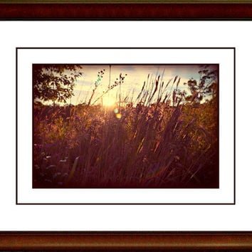Sunrise Sunset Photography,copper,glowing,wildflower silhouette,summer evening,romantic decor,botanical print,ravishing sunset,wildflowers