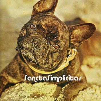 French Bulldog Antique Illustration Digital Download Printable Image no. 100