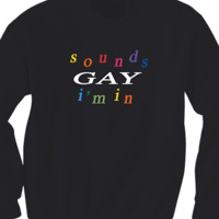 Sounds Gay I'm In Sweater