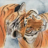 Watercolor painting of tigers 8x10 print from original wild animals african by earthspalette