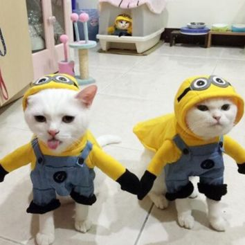 Minion Cat Halloween Costume