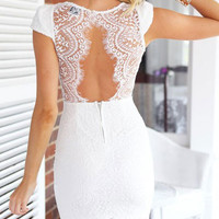 Graceful White V Neck Scalloped Trim Lace Mini Dress