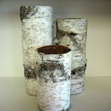 Set of 3 Birch bark covered glass vases for by NHWoodscreations
