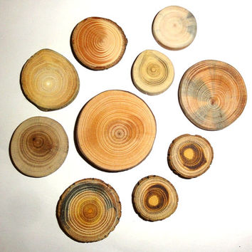 Various Wood 10 pieces. Wood Slices Natural, Jewelry Supplies, Wooden Supplies, Jewelry Findings for Unique Making Jewellery. Wood Jewelry