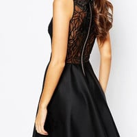 Black Sheer Panel Embroidery Sleeveelss Skater Dress