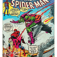 Amazing Spiderman #122 / July 1973 / KEY ISSUE: Death of the Green Globin / Comic Book / Marvel Comics / Spiderman Comic / Stan Lee