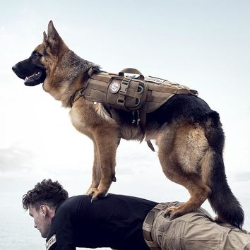 Tactical Dog vest Harness Military