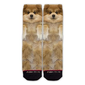 Function - Pommeranian Dog Fashion Sock