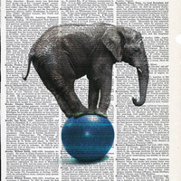 Illustration of Elephant on Ball  Print on Upcycle Vintage Page Book Print Art Print Dictionary Print Collage Print