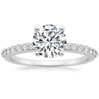Preset Platinum Petite Shared Prong Diamond Ring (1/4 ct. tw.) with 1 Carat Round Diamond