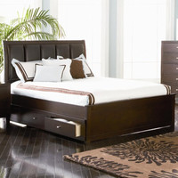 Lorretta King Contemporary Platform Style Storage Bed