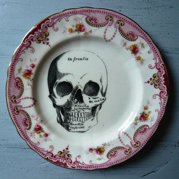 Skull Vintage China Tea Plate Wall Decor