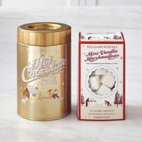 Williams-Sonoma Salted Caramel Hot Chocolate & Mini Marshmallows Set