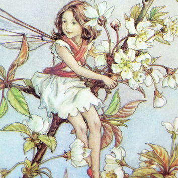 Wild Cherry Blossom Fairy Picture, Vintage Bookplate, Flower Fairy of the Trees, nursery art