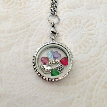 Living locket large silver stainless steel with crystals with Grandkids heart family tree and heart birthstones