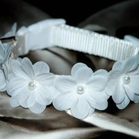 Dog Collar Wedding White Flower, sizes 13 - 19 inches