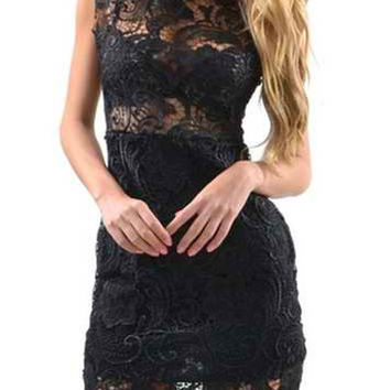 Stand Collar Sleeveless Bodycon Lace Dress
