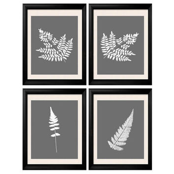 Antique Botanical Fern Print,Set of 4, Antique Fern Frond, Tropical Illustration, Tropical Wall Art, Tropical Decor 8x10 print set of 4