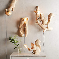 Flying Squirrel Handcarved Woodlore Sconce