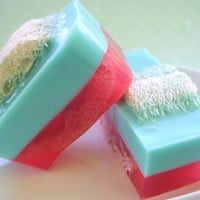 Soap - Groovy Guava Loofah Soap - All Natural Glycerin - LAST ONE