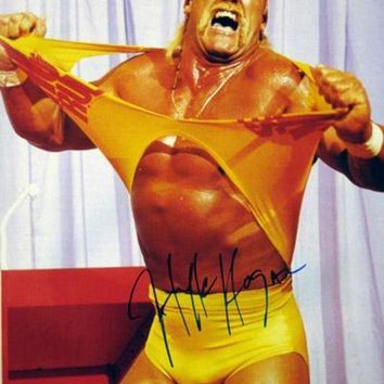 MDIGON Hulk Hogan Signed Autographed Hulkamania Glossy 16x20 Photo (ASI COA)