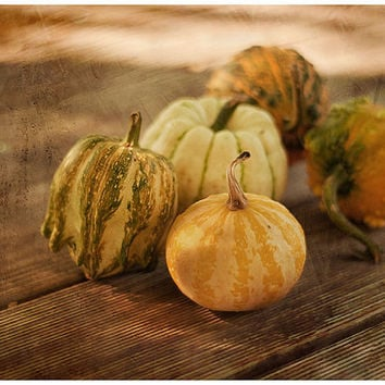 Still life photo food photography nature photography kitchen art 8x12 photo print fall decoration thanksgiving decor rustic kitchen wall art