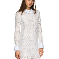 Muse Lace Collar Long Sleeve Dress
