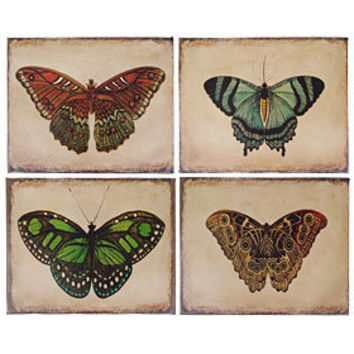 Retro Butterfly Canvas Prints