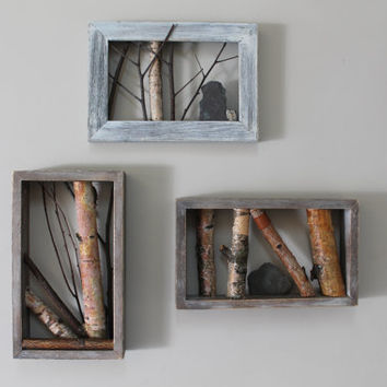 Framed Branches, Rustic Log Cabin Decor, White Birch Framed Art, Twig Wall Art, Cottage Decor, 3D Art, Shadow Box Wall Decor, White Birch