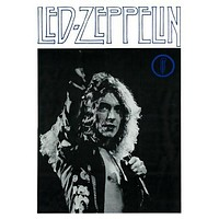 ROBERT PLANT POSTER Led Zeppelin RARE HOT NEW 20x29