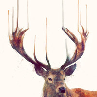 Red Deer // Stag Stretched Canvas by Amy Hamilton | Society6