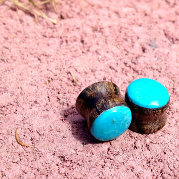 Genuine turquoise & wood plugs--Item #110