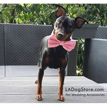 Pink Dog Bow tie attached to collar, Pink dog wedding, dog birthday gift