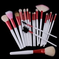 20 PCS Cosmetic Makeup Brushes Set with One Pink Pouch