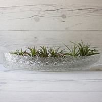 Vintage Pressed Glass Canoe Boat Bowl | Daisy and Button Pattern | Air Plant Holder | Succulent Planter