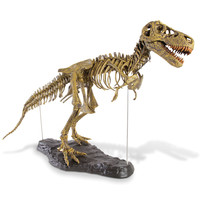 The Young Paleontologist's Authentic T-Rex Kit