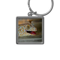 Close up portrait of Tokay gecko in TulaZoo Silver-Colored Square Keychain