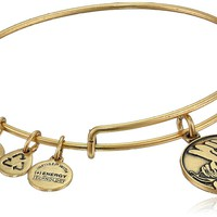 "Alex and Ani Because I Love You ""Sister"" Expandable Rafaelian Gold Finish Wire Bangle Bracelet"