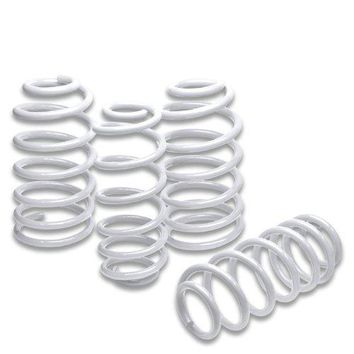 Audi A4 Suspension Lowering Springs (White) - B6 Typ 8E