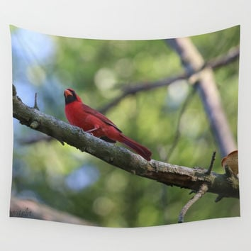 Cardinal Series III Wall Tapestry by Theresa Campbell D'August Art
